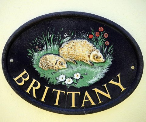 Brittany Image