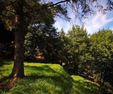 Les Niaux Farm Image